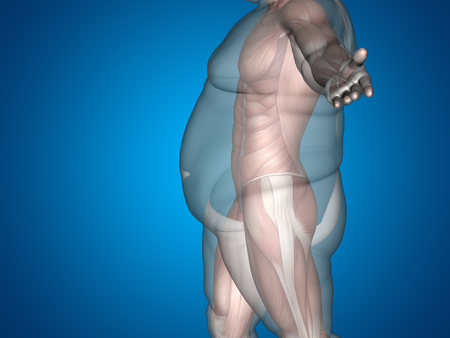 nude male body: Human man fat and slim concept on blue background