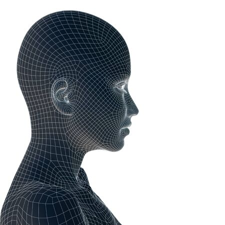 artificial model: Concept or conceptual 3D wireframe young human female or woman face or head isolated on background Stock Photo