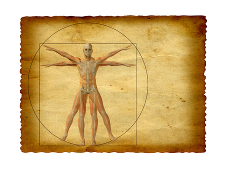 correlation: Concept or conceptual vitruvian human body drawing on old paper background