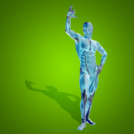 human bones: Conceptual 3D anatomía de la salud humana en el hombre fondo azul