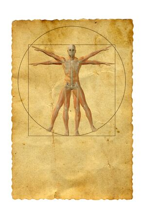 leonardo davinci: Concept or conceptual vitruvian human body drawing on old paper background