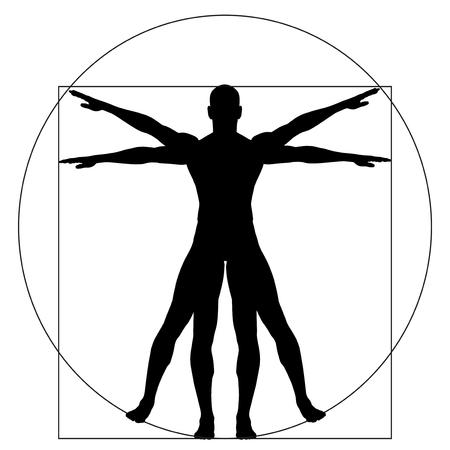 masculin: Humana o el hombre de Vitruvio como un concepto o conceptual anatomía carrocería proporción 3d aislado en el fondo