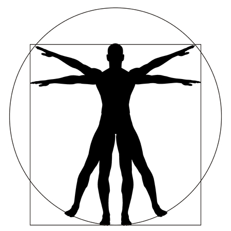 male: Vitruvian human or man as a concept or conceptual 3d proportion anatomy body isolated on background