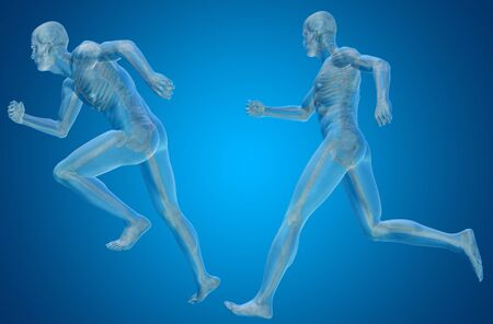 spine x ray: Conceptual man or human 3D anatomy or body on blue background