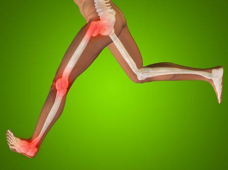 shin bone: Conceptual human body anatomy articular pain on green background