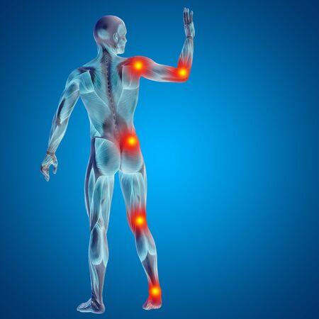 osteoporosis: Conceptual cuerpo dolor en las articulaciones hombre anatom�a humana en 3D sobre fondo azul