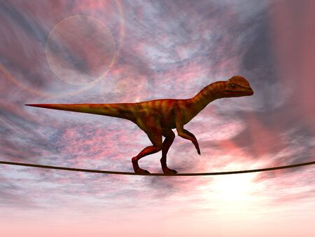 business metaphor: Conceptual business metaphor as animal or rope over sunset sky background