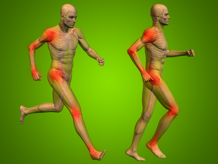transparent body: Conceptual 3D human man or male skeleton pain or ache anatomy transparent body, green background