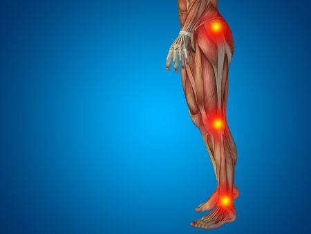 osteoporosis: Conceptual anatom�a cuerpo humano dolor articular fondo azul