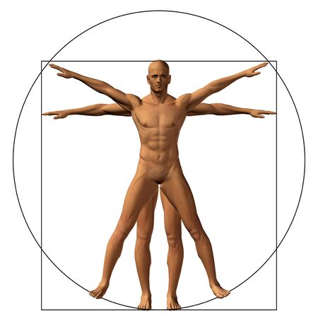 uomo vitruviano: Vitruvian human or man as a concept or conceptual 3d proportion anatomy body isolated on background