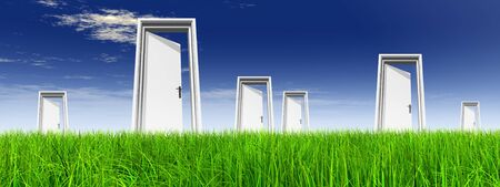 vision concept: White door in green grass with sky background banner Stock Photo