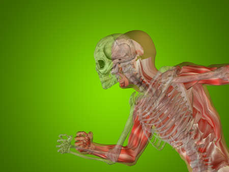 Conceptual Anatomy human body on green background