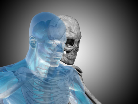Conceptual Anatomy human body on gray background