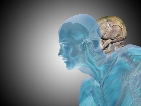 medical scan: Conceptual Anatomy human body on gray background