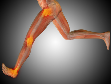 Conceptual human body anatomy articular pain on gray background Stock Photo
