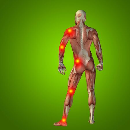 shoulder inflammation: Conceptual 3D human man anatomy joint pain body on green background