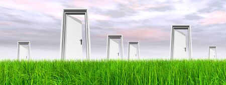 White door in green grass with sky background banner Stock Photo