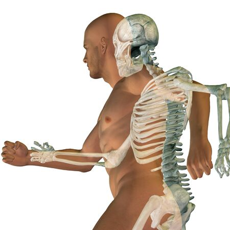 Conceptual Anatomy human body isolated on background