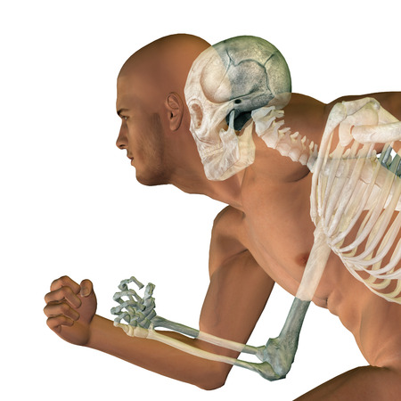 medical scan: Conceptual Anatomy human body isolated on background
