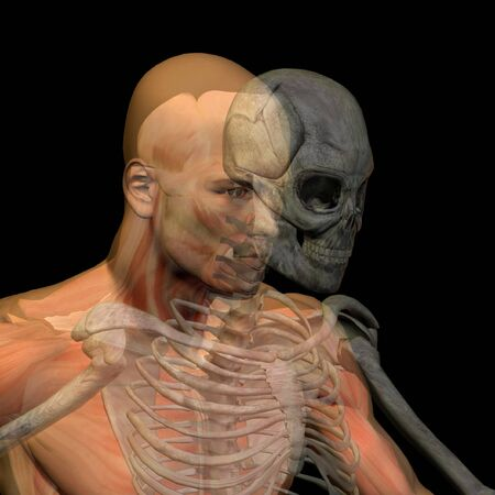 Conceptual Anatomy human body on black background Stock Photo