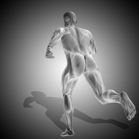 Conceptual 3D human man health anatomy on gray background Stock Photo