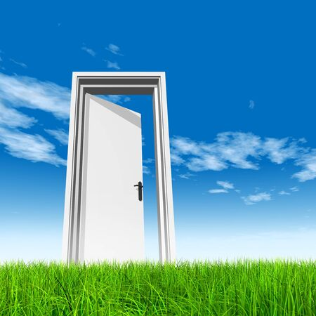 Conceptual white door in green grass with sky background
