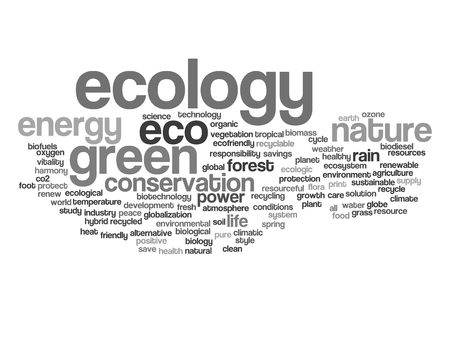 protect: Concept or conceptual abstract green ecology or energy and conservation word cloud text isolated on white background