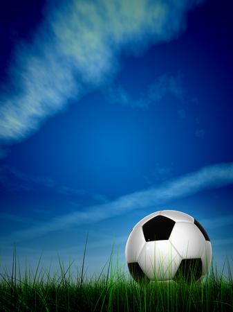 3d ball: Conceptual 3D soccer ball in fresh green summer or spring field grass with a blue sky background