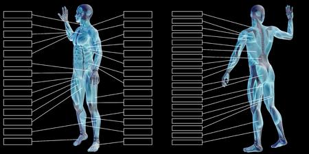 黒の背景に分離された本文 3 D 男筋の解剖学 写真素材 - 87849388