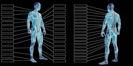 黒の背景に分離されたテキストと3D 男性の筋肉解剖学