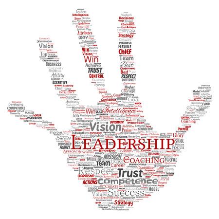 Leadership word cloud concept.