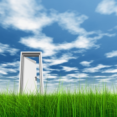 White door in green grass with sky background