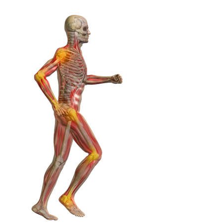 Conceptual 3D human man anatomy or health design, joint or articular pain, ache or injury isolated on white background  for anatomy and health designs, isolated on black background
