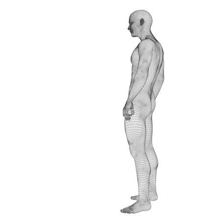 3D human or male anatomy made of white wireframe or mesh, a man isolated on black background Banco de Imagens - 156190226