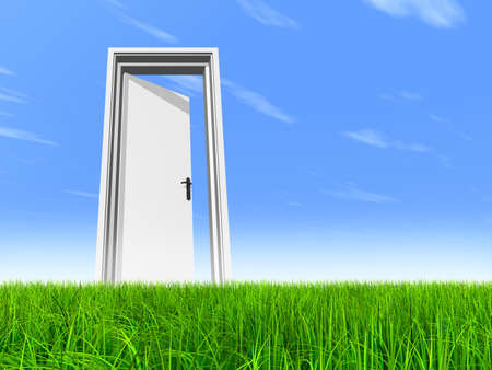 Green, fresh and natural 3d conceptual grass over a blue sky background, a opened door at horizon ideal for religion, home, recreation, faith, business, success, opportunity or future Banco de Imagens - 155970117
