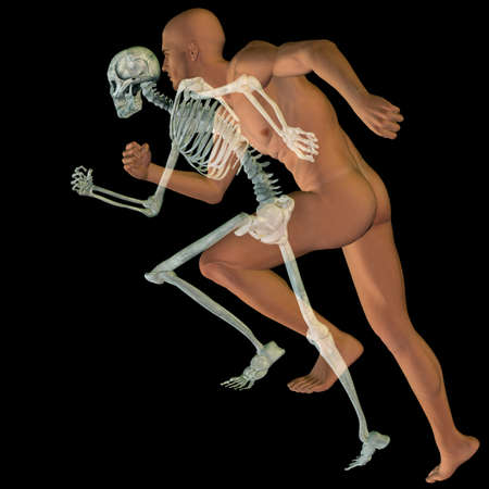 Concept conceptual 3D illustrstion of a human man with bones for anatomy, medicine or health, black background, made of a skeleton and body as in a x-ray, metaphor to education, sport or medical desig Banco de Imagens - 156190611
