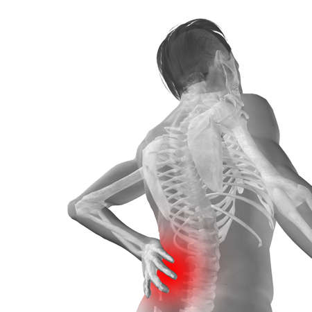 Concept or conceptual 3d human male or man anatomy isolated on white  background as metaphor to pain, back, body, spine, backache, medical, injury, medicine, health, hurt, painful, spinal  therapy Banco de Imagens - 156190641