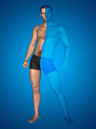 3D illustration of a concept strong young male man bodybuilder vs underweight thin on blue background for sport, athlete, fitness, health, fit, sexy, strength, power, attractive, bodybuilding gym diet 免版税图像 - 157888871