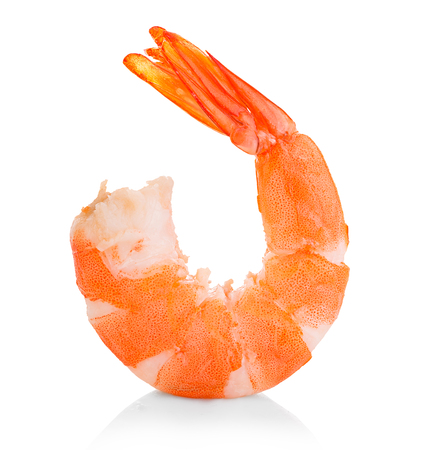 Tiger shrimp. Prawn isolated on a white background. Seafood