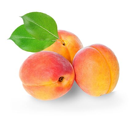 apricot kernel: Apricots isolated on a white background.