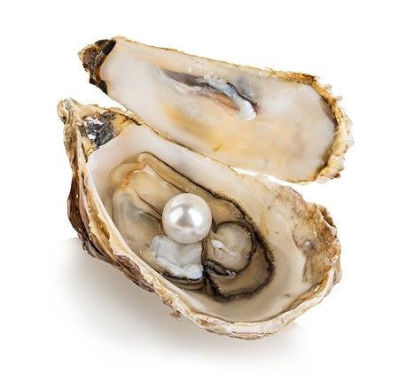 perlas: Ostra con perlas aisladas sobre fondo blanco