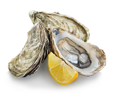 Oysters isolated on a white background Imagens - 45463936