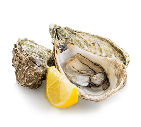 Oysters isolated on a white background Imagens - 45463941