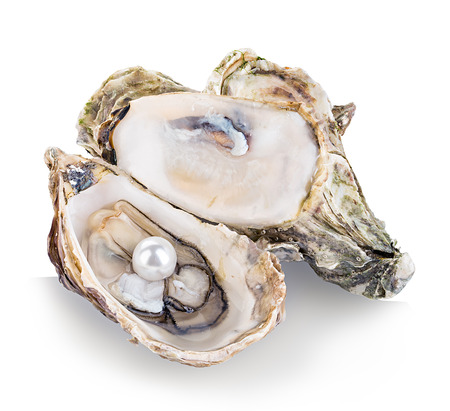 Oyster with pearls isolated on white background