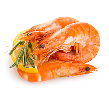 Tiger shrimps with lemon slice and rosemary. Prawns with lemon slice and rosemary isolated on a white background. Seafood Banco de Imagens