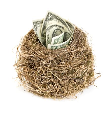 huevo blanco: nido de pájaro original con billetes de un dólar. Nuevo negocio de partida por los billetes de banco. Concepto de negocio.