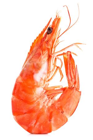 tiger shrimp: Tiger shrimp. Prawn isolated on a white background. Seafood. Stock Photo