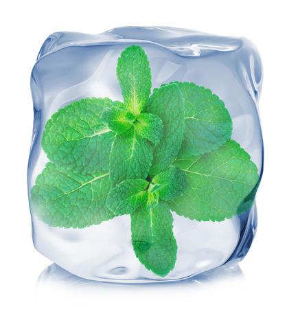 ミントの葉白背景に分離されたアイス キューブのクローズ アップで冷凍。 写真素材