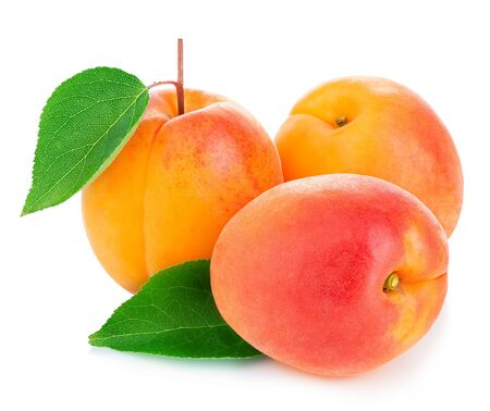 Fresh apricots with leaves close-up isolated on a white background. Imagens
