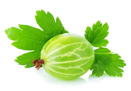 Green gooseberry with leaf close-up isolated on a white background.